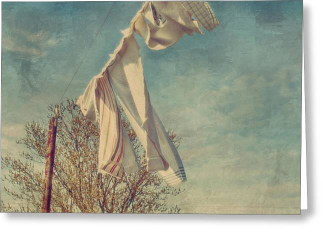 Kathy Jennings Fine Art Prints Greeting Cards -  Blowing In The Wind Spring Is Near Greeting Card by Kathy Jennings