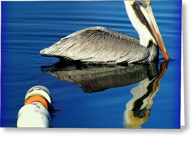 Birds Of A Feather Greeting Cards -  Blues Pelican Greeting Card by Karen Wiles