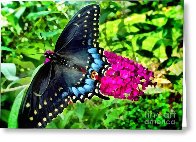 Fushia Mixed Media Greeting Cards -  Butterfly Beauty Greeting Card by SiriSat