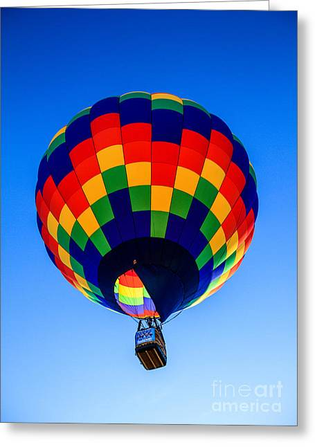 West Wetland Park Greeting Cards -  Checkered  Colored Hot Air Balloon  Greeting Card by Robert Bales