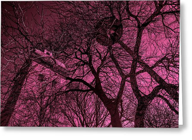 Streetlight Greeting Cards -  Church And Trees In Pinkish Greeting Card by Toppart Sweden