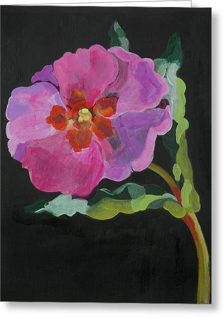 Tasteful Art Greeting Cards -  Cistus New Zealand Greeting Card by Deborah Barton