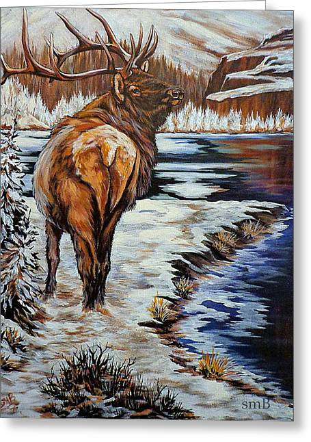 Lamdscape Greeting Cards -  Colorado Winter Greeting Card by Susan Bergstrom