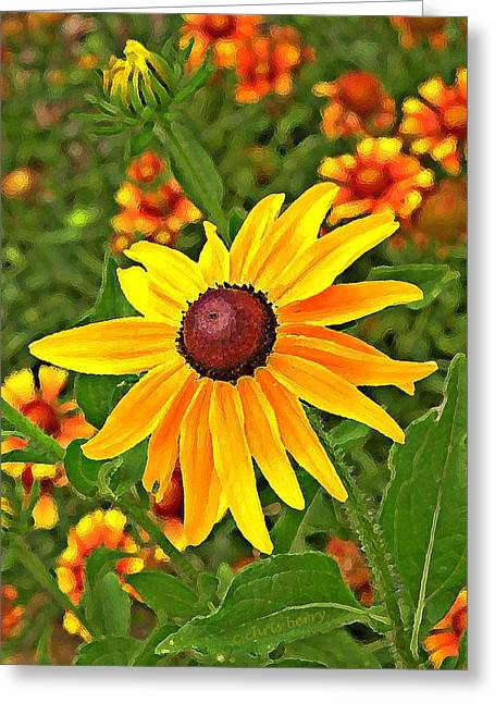 Patterned Marking Greeting Cards -  Coneflower and Gaillardia Greeting Card by Chris Berry