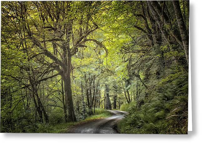 Gravel Road Greeting Cards -  Country Road Greeting Card by Mike DeCesare