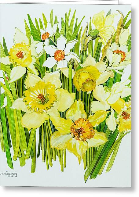 Flower Still Life Greeting Cards -  Daffodils and narcissus Greeting Card by Joan Thewsey