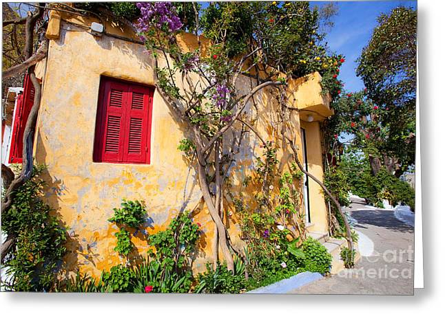 Athens Greeting Cards -  Decorated house with plants Greeting Card by Aiolos Greek Collections