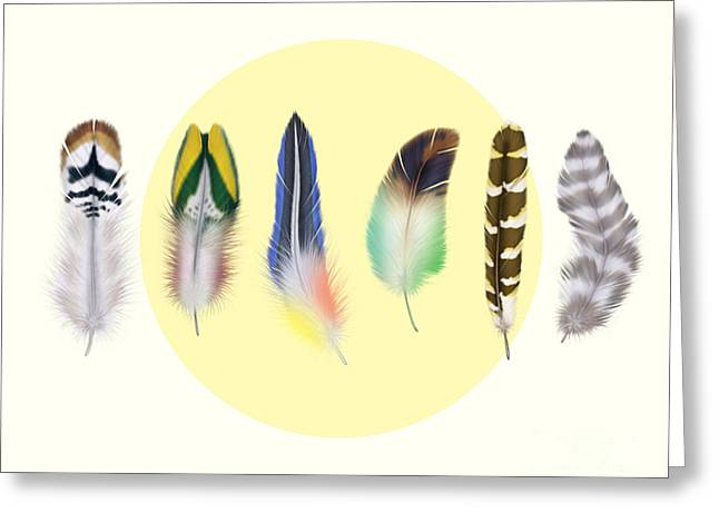 Animals Love Greeting Cards -  Feathers 2 Greeting Card by Mark Ashkenazi