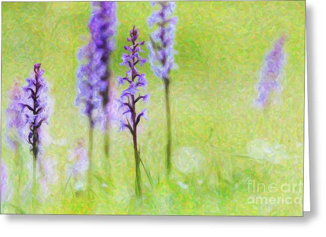Lilac Digital Art Greeting Cards -  Fragrant Orchids Greeting Card by Tim Gainey