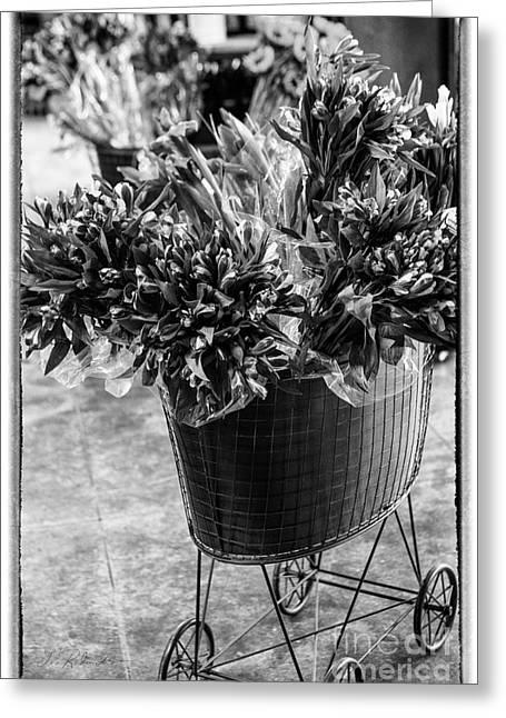 Editorial Greeting Cards -  Fresh Cut Flowers Greeting Card by Iris Richardson