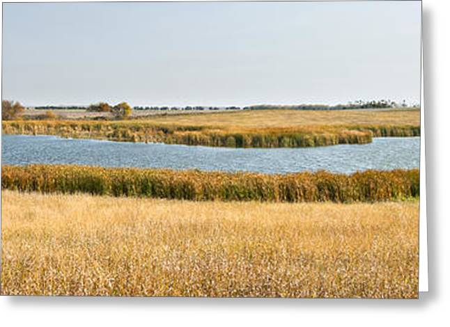 Photos Of Autumn Greeting Cards -  Grass Land and Water Greeting Card by Donald  Erickson