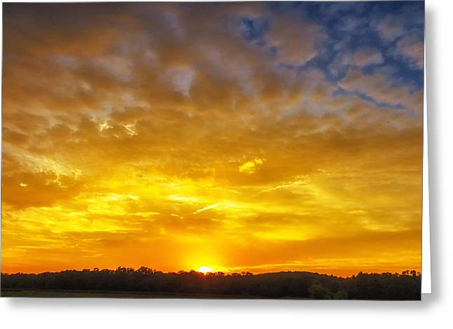 Concord Greeting Cards -  Great Meadows Sunset of Gold Greeting Card by Sylvia J Zarco