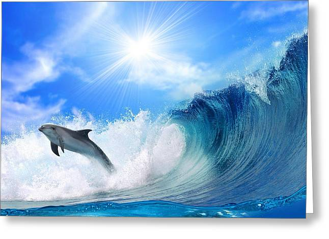 Surfing And Dolphins Greeting Cards -  In The Morning Light Greeting Card by Raphael  Sanzio