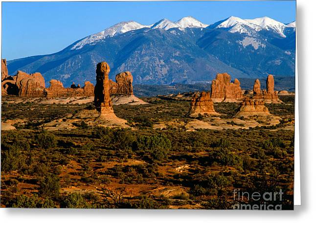 Geology Photographs Greeting Cards -  La Sal Mountains and sandstone spires Greeting Card by Tracy Knauer