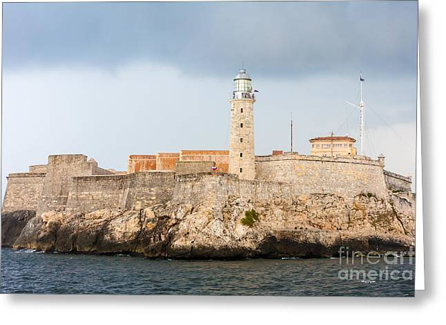 Seabirds Greeting Cards -  Lighthouse Greeting Card by Maslyaev Yury