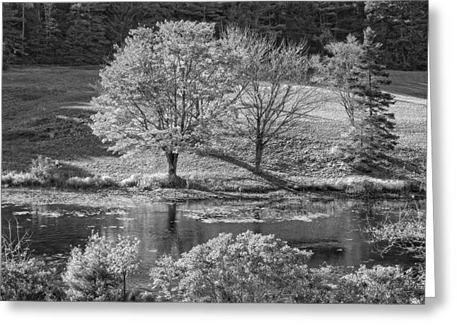Maine Landscape Greeting Cards -  Long Pond on Mount Desert Island in Maine Greeting Card by Keith Webber Jr