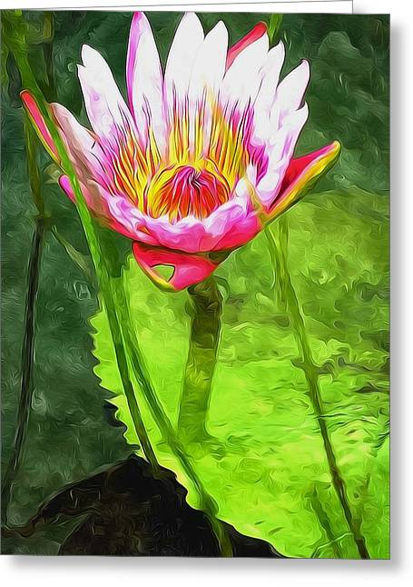 Environment Greeting Cards -  Lotus flower on the water 1 Greeting Card by Lanjee Chee