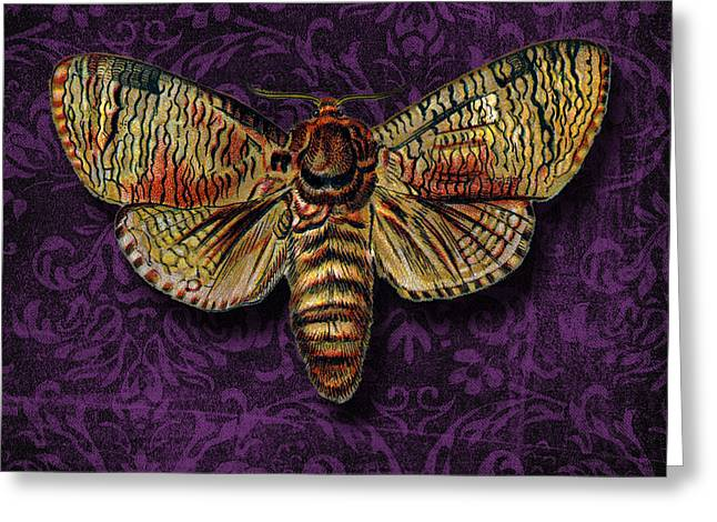 Antenna Mixed Media Greeting Cards -  Love for Butterflies Greeting Card by Ramneek Narang