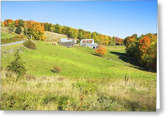 Maine Farms Greeting Cards -  Maine Farm On Side Of Hill In Autumn Greeting Card by Keith Webber Jr