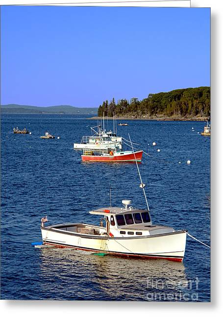 Calm Greeting Cards - Maine Lobster Boat Greeting Card by Olivier Le Queinec