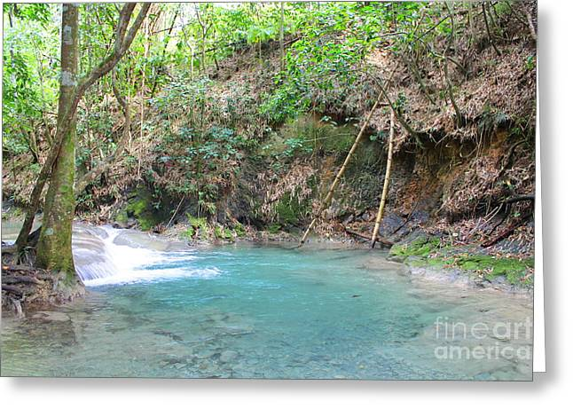 Mayfield Greeting Cards -  Mayfield Falls Jamaica 4 Greeting Card by Debbie Levene
