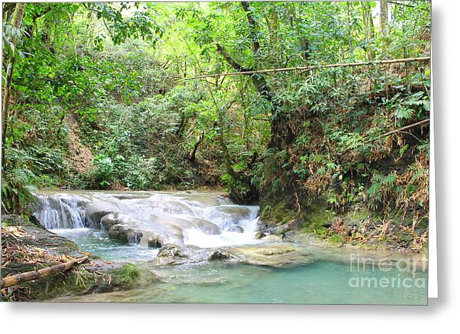 Mayfield Greeting Cards -  Mayfield Falls Jamaica 8 Greeting Card by Debbie Levene