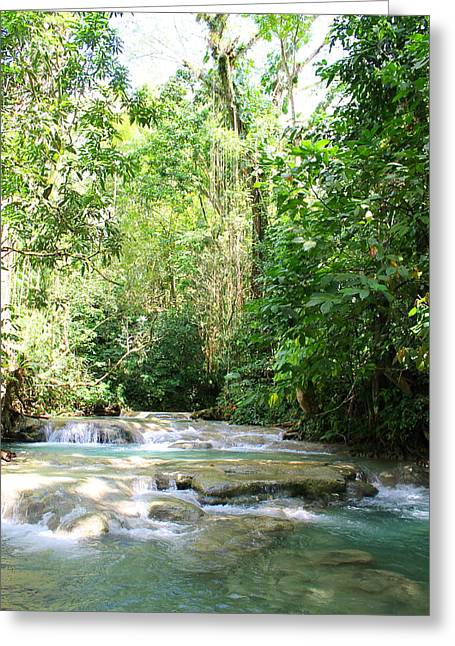 Mayfield Greeting Cards -  Mayfield Falls Jamaica2 Greeting Card by Debbie Levene