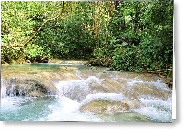 Mayfield Greeting Cards -  Mayfield Falls Jamaica3 Greeting Card by Debbie Levene