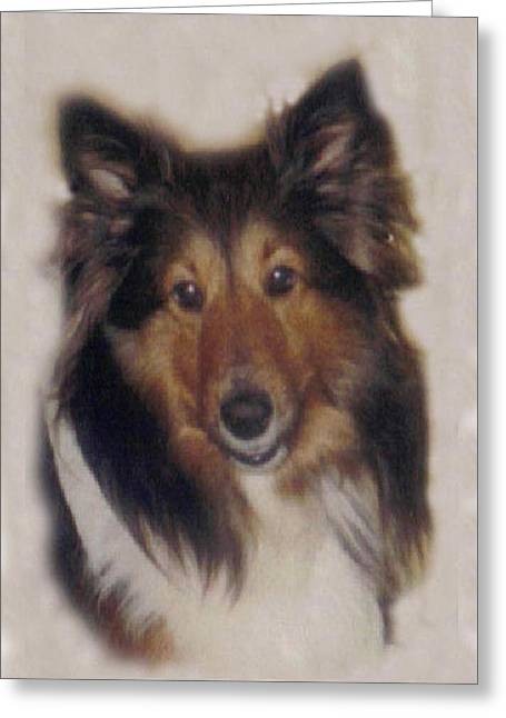 Pat Mchale Greeting Cards -  Missy Greeting Card by Pat Mchale