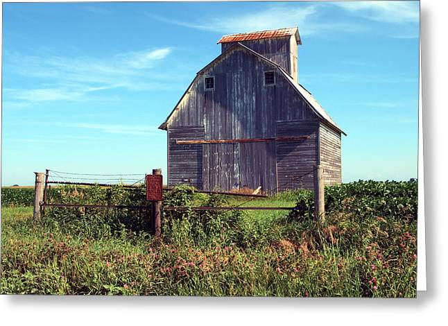 Breezy Greeting Cards -  On The Farm Greeting Card by Tom Druin