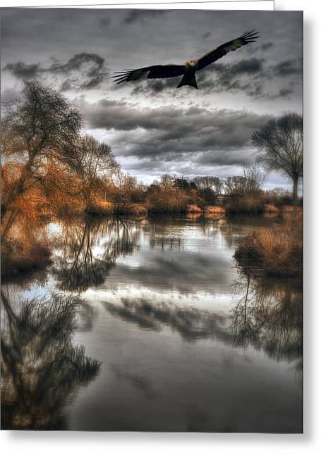 Warwickshire Greeting Cards -  On the hunt Greeting Card by Jason Green