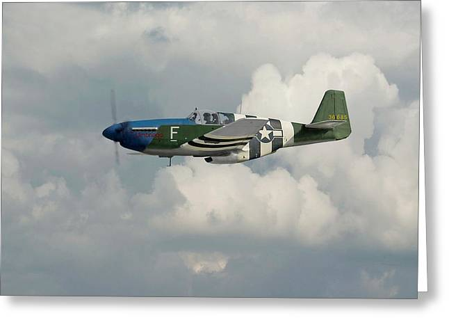 Fighter Aircraft Greeting Cards -  P51 Mustang Gallery - No1 Greeting Card by Pat Speirs