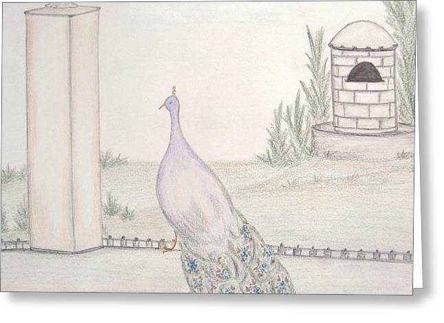 Peacock in an Italian Landscape Greeting Card by Christine Corretti