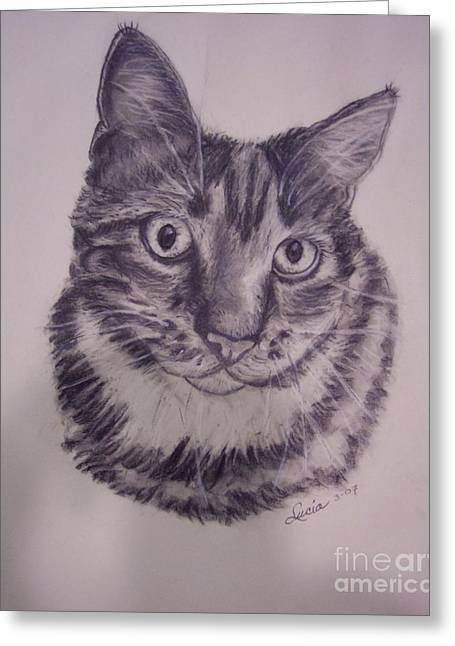 Rescue Drawings Greeting Cards -  Pet Portraits  Greeting Card by Lucia Grilletto