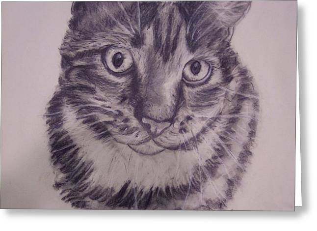 PET PORTRAITS  Greeting Card by Lucia Grilletto