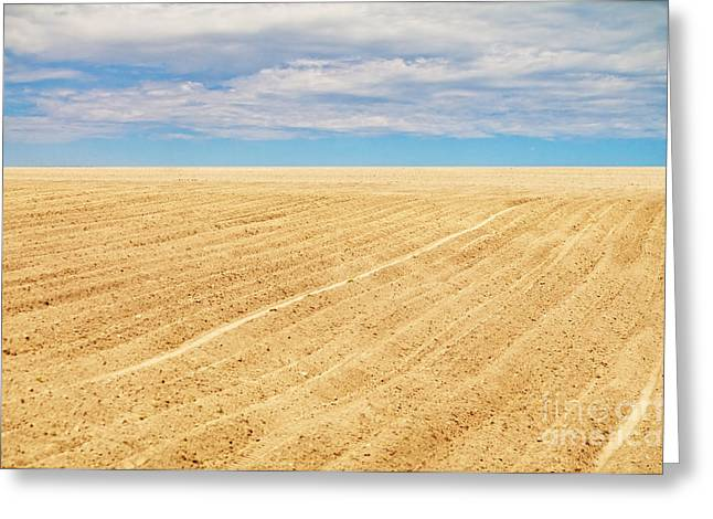 Plowed Fields Greeting Cards -  Ploughed Field Greeting Card by Aleksey Tugolukov
