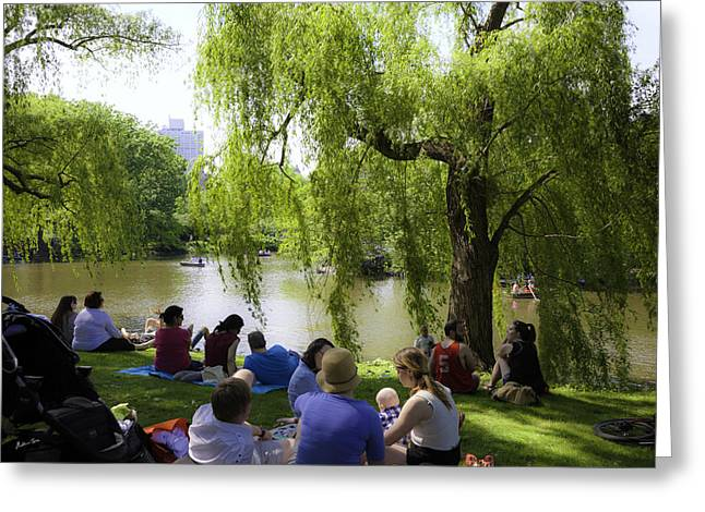 Weeping Greeting Cards -  Pond Dreaming - Central Park Greeting Card by Madeline Ellis