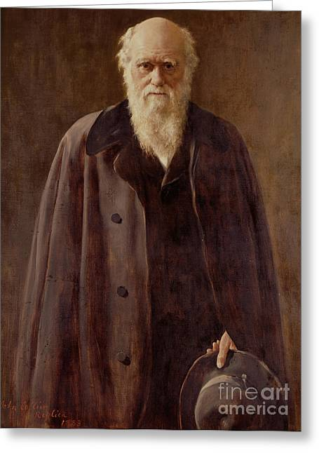 Zoology Greeting Cards -  Portrait of Charles Darwin Greeting Card by John Collier