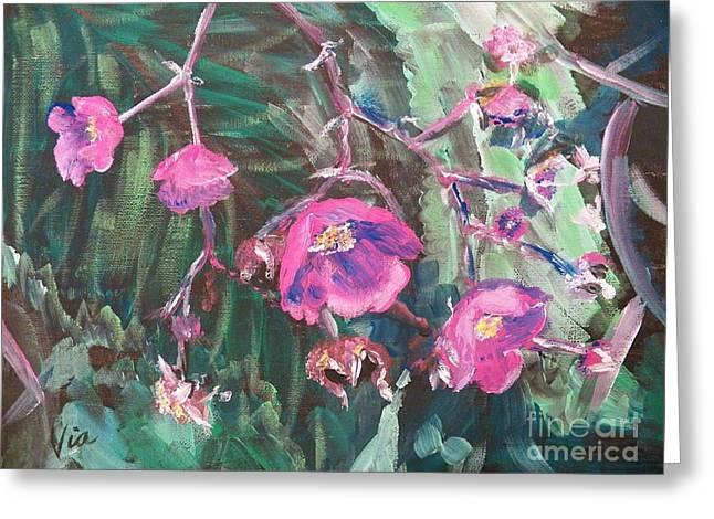 Ptg  Adirondack Wildflower Greeting Card by Judy Via-Wolff