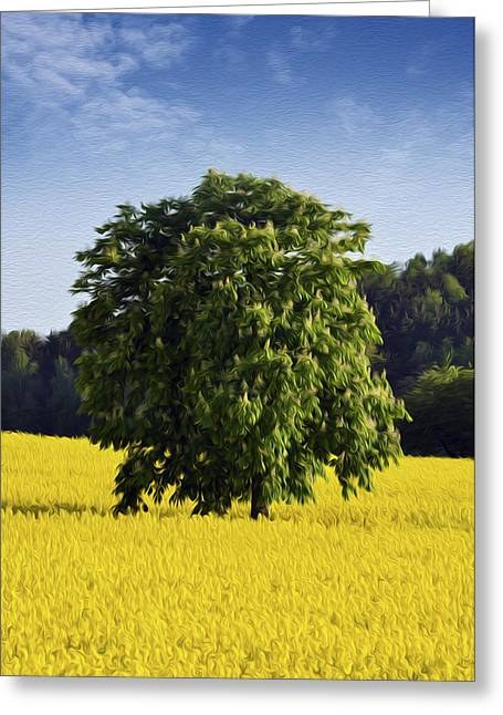 Grow Digital Art Greeting Cards -  Rapeseed Field  Greeting Card by Aged Pixel