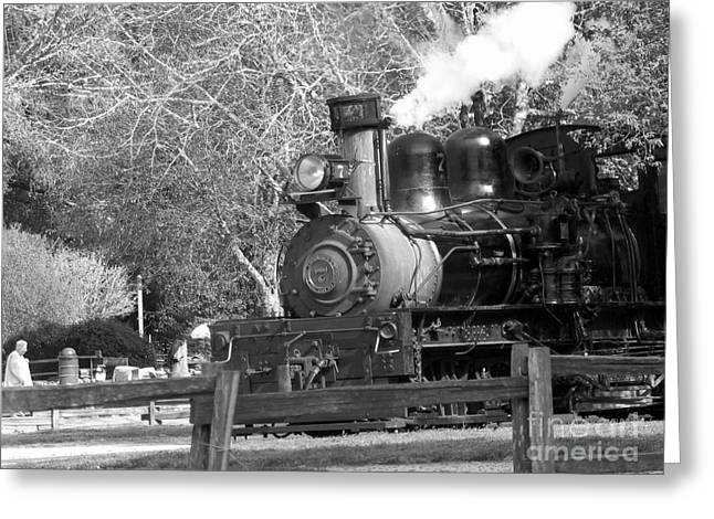 People Pyrography Greeting Cards -  Roaring Camp Railroad  Greeting Card by Chris Berry