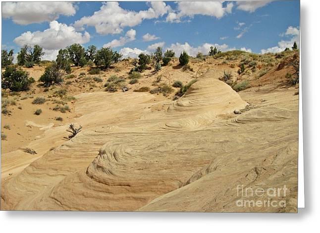 Holes In Sandstone Greeting Cards - Devils Garden - Sandstone Mound Greeting Card by Sheryl Young