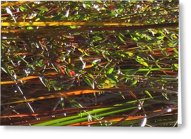 Abstract Digital Mixed Media Greeting Cards -   Sparkle  Bamboo grass and pretty flowers elegant digital decorative formation   Greeting Card by Navin Joshi