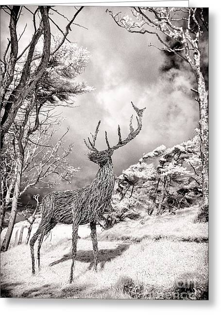 Infrared Greeting Cards -  Stag Sculpture Isle of Mull Greeting Card by Janet Burdon