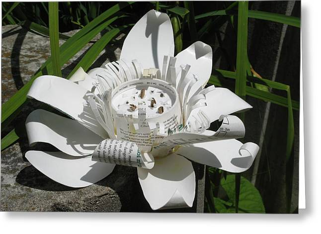 Flowers Sculptures Greeting Cards -  Starbucks coffee cup Lotus Greeting Card by Alfred Ng