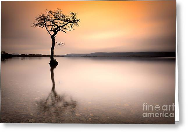 Scottish Landscapes Greeting Cards -  Stunning Loch Lomond Sunrise Greeting Card by John Farnan