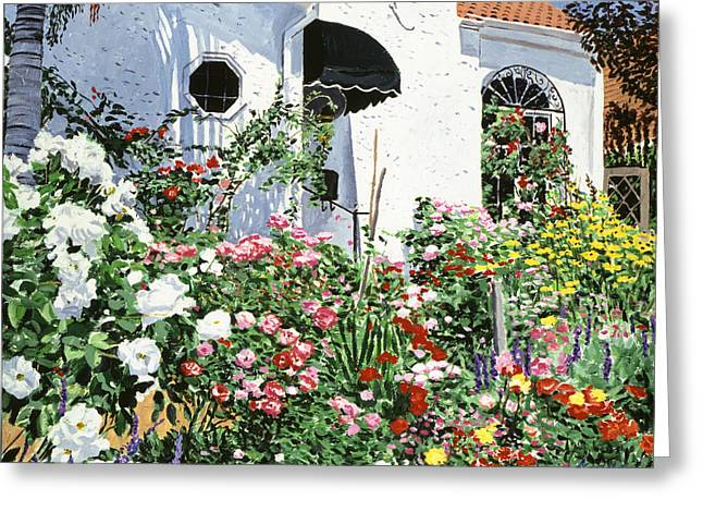 Stucco Greeting Cards -  Summer Garden Flowers Greeting Card by David Lloyd Glover