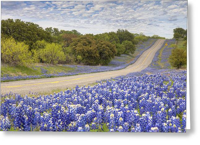 Blue Bonnet Greeting Cards -  Texas Bluebonnet Highway - Texas Hill Country Greeting Card by Rob Greebon