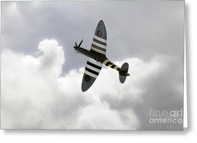 Recon Greeting Cards -  The Blue Spitfire Greeting Card by J Biggadike
