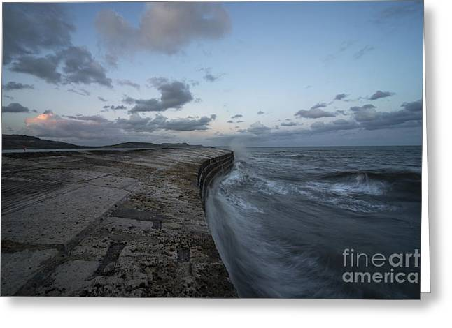 Harbour Wall Greeting Cards -  The Cobb at Lyme Regis  Greeting Card by Rob Hawkins